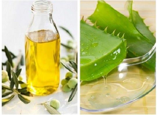 Hỗn hợp lô hội và dầu oliu giúp ngăn ngừa các dấu hiệu lão hóa đến sớm