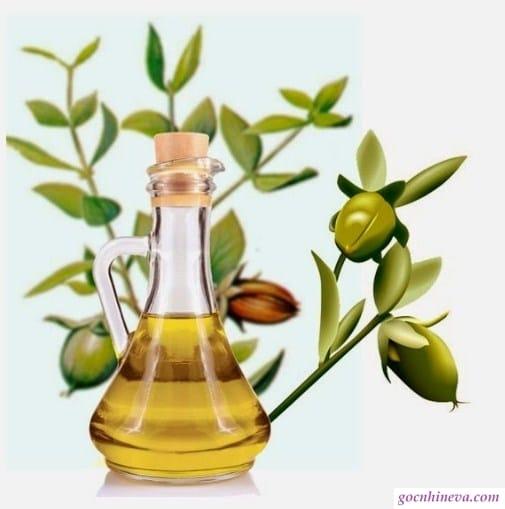 Dầu Jojoba giúp bảo vệ da, dưỡng ẩm