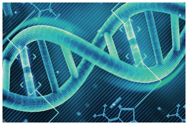 Tóc bạc sớm do di truyền