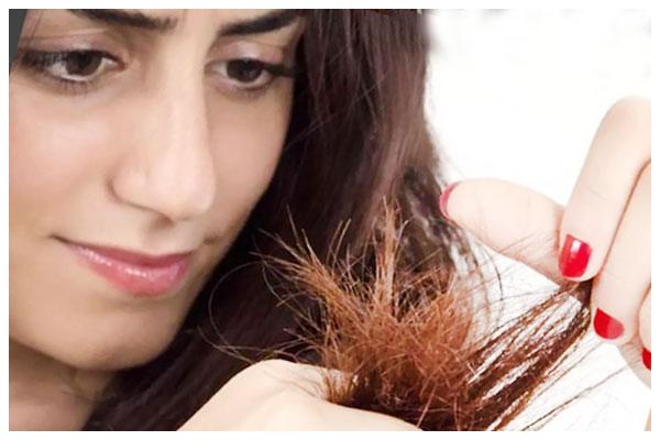 Dầu dưỡng tóc và tinh dầu dưỡng tóc chống nhiệt