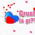 Crush là gì (crush là j, crush nghĩa là gì, crush trên facebook là gì) ?
