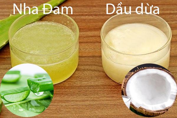 Công thức làm kem dưỡng da từ dầu dừa và gel nha đam