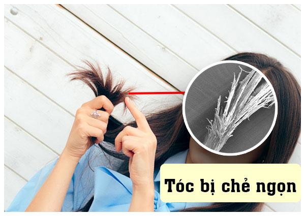 kem ủ phục hồi tóc hư tổn
