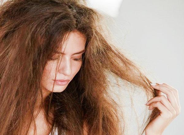 tóc bị khô